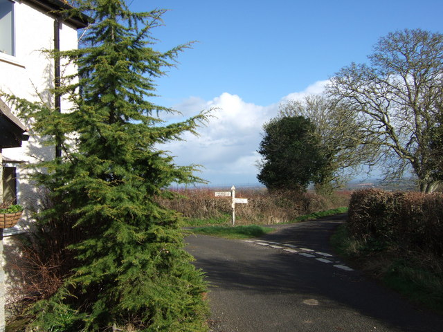 Lane junction north of Curry Mallet
