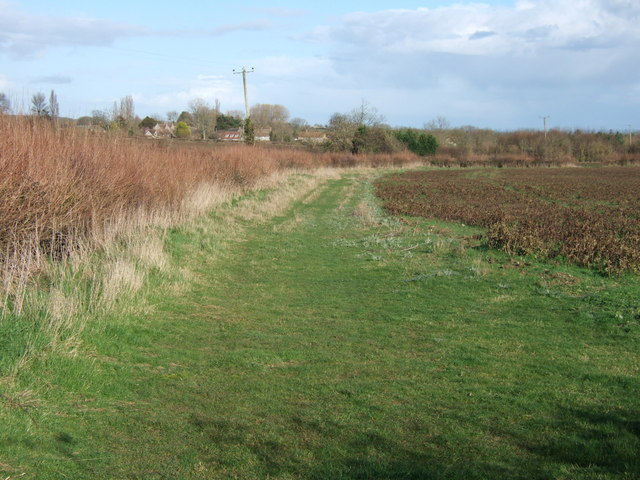 Near Field Gate