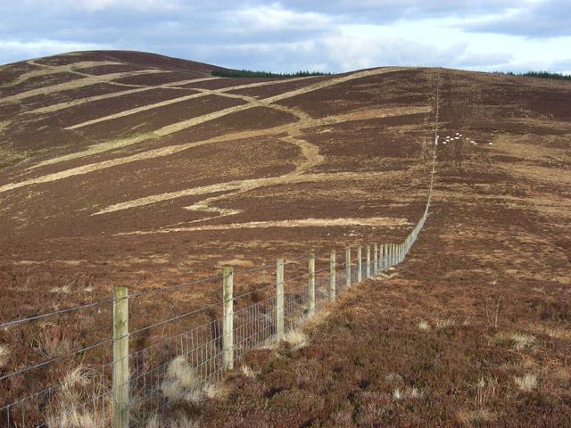 Between Glengap Head and Wintergill Head