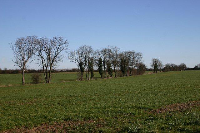 Farmland near Blo' Norton
