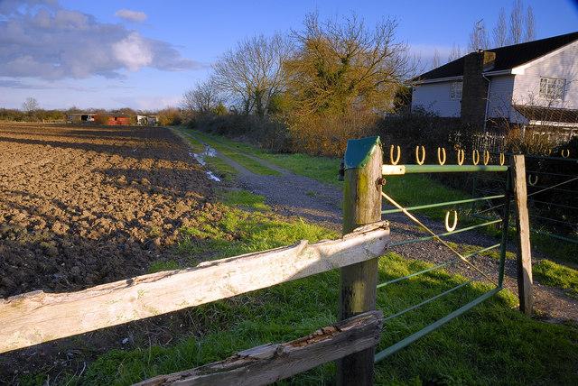 Track to stables, Eyebury Road, Eye