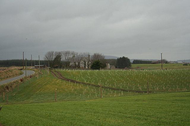 Headtown Farm