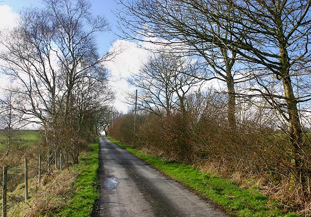 Road near Llanfihangel Helygen