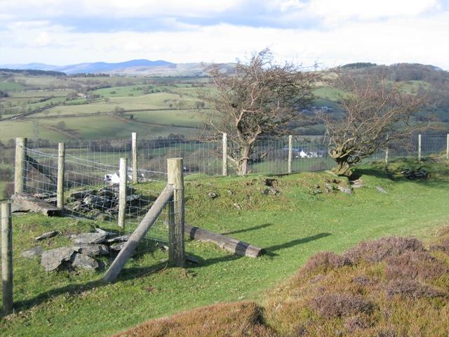 Odd Corner in the Boundary Fence