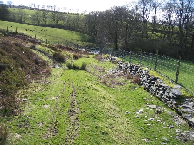 Bridleway near Pen-bedw