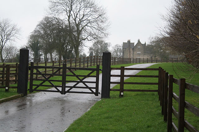 Driveway to old manor house near Hollington