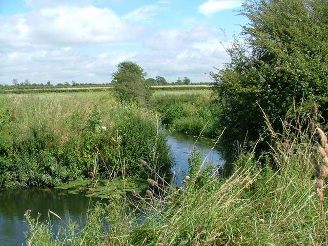 The River Ray at Freeths wood just outside Cricklade