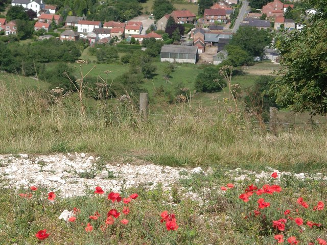 Millington from poppy-lined Wolds Way