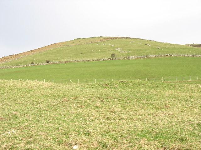 The north-western slope of Y Foel