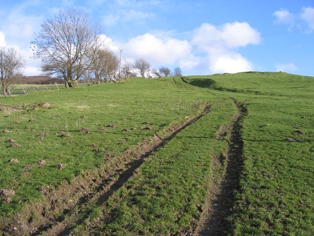 Track Junction at Pen-y-bryn Farm