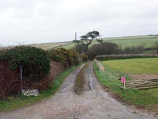 Lane leading to Scotland Farm.