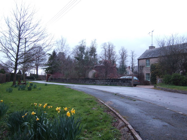Spring bulbs in Whelford
