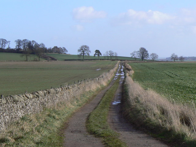 Dairsie track