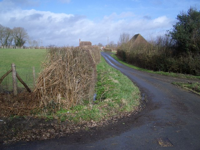 Country Lane near Trolliloes, east of Cowbeech