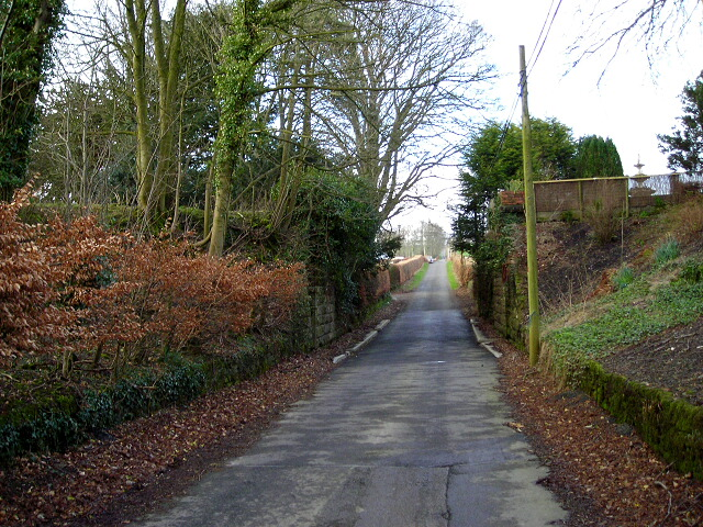 Minor Road Near Amisfield