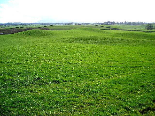 Green Rolling Field Near Kirkton