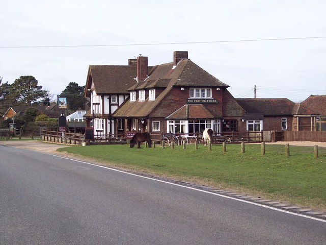 The Fighting Cocks, Godshill