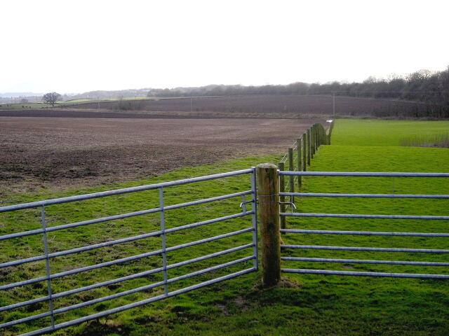 Fields Near Amisfield
