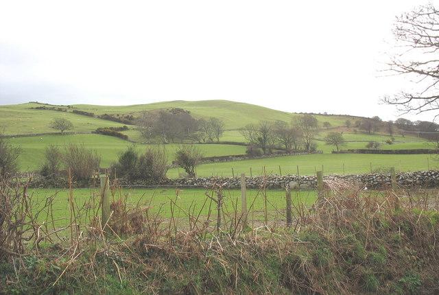 Grazing land at Tyddyn-madyn