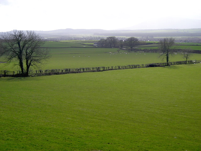 Fields Near Pierbanks