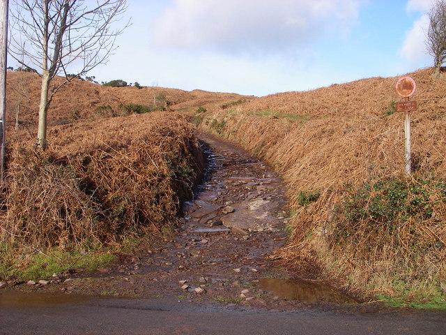Bridleway to Cefn Moel