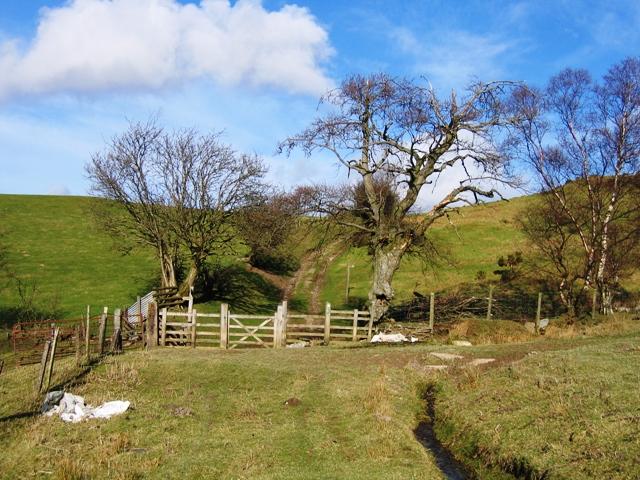 On the Clwydian Way above Bryneglwys