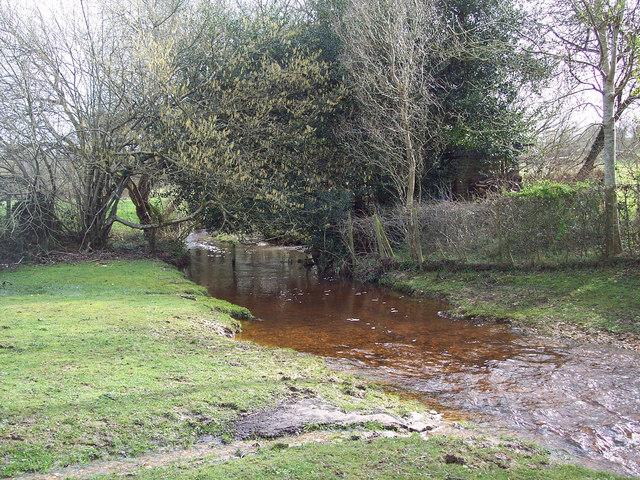 Stream running to join the Avon - Godshill