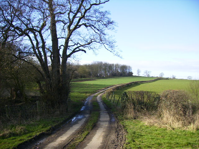 Colley Broach Road east of Newburgh Priory
