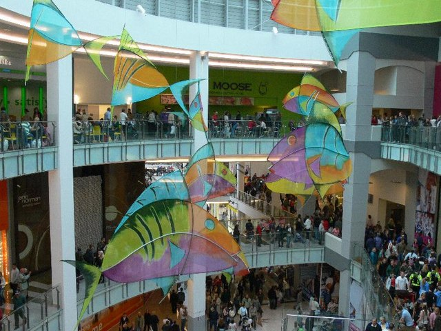 Inside the new Drake Circus Shopping Mall