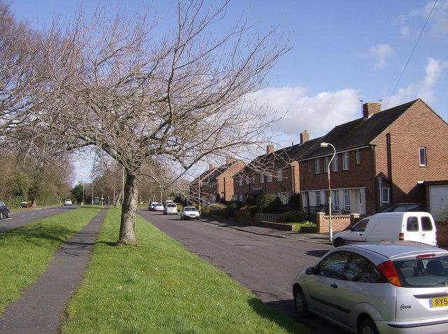 Suburban Emsworth