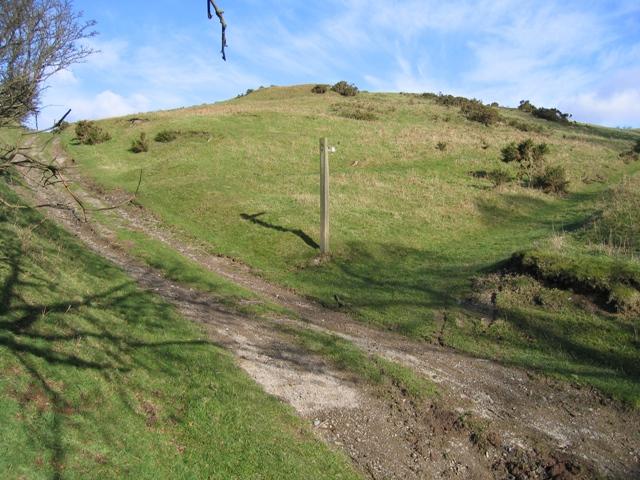 Clwydian Way and Bridleway
