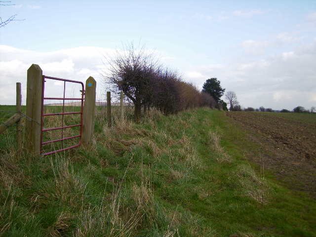 Bridleway between Skew Green and Wildon Grange