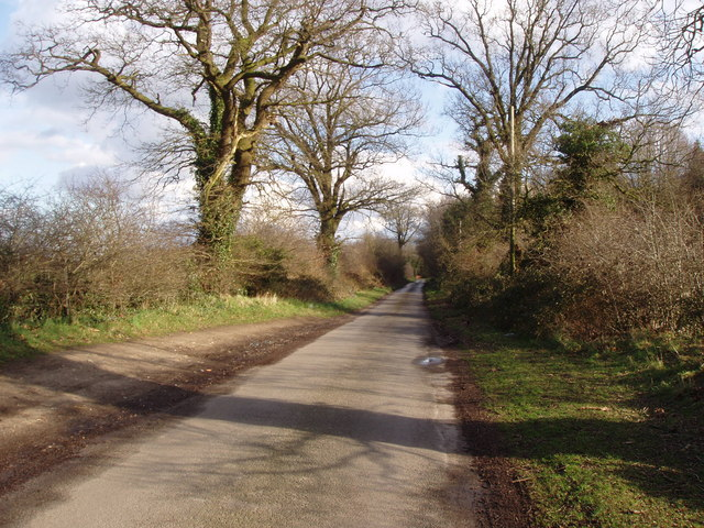 The road to Wood Norton
