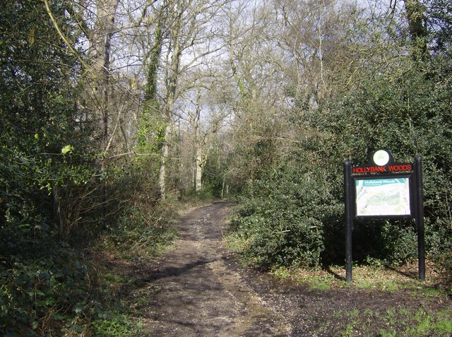 Entrance to Hollybank Wood