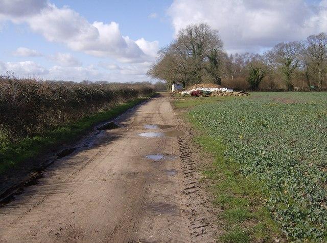 Track to Horsepasture Farm
