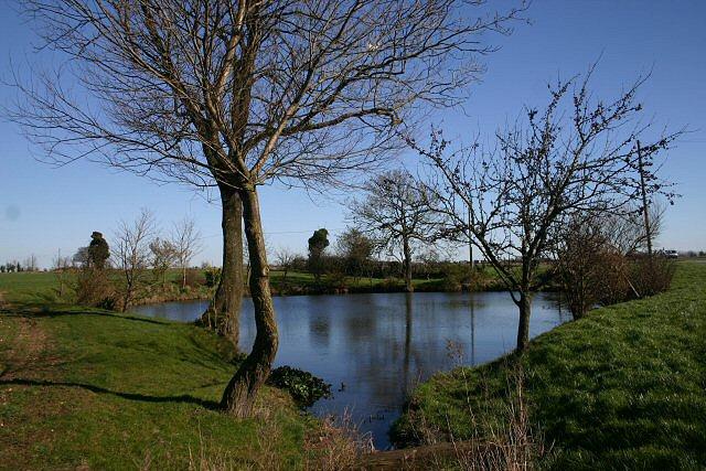 Pond near Garboldisham