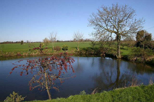 Pond near Garboldisham