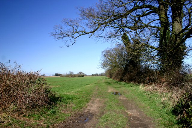 Track to Kenninghall Heath