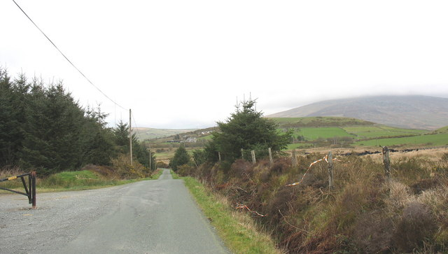 The Bwlchderwin road from the main entrance to the forest
