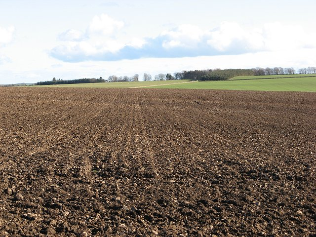 Ploughed and cultivated field, Blackburn