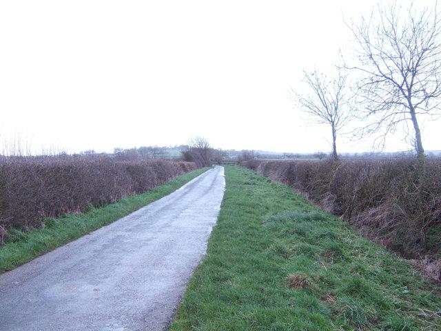 Droveway Lane