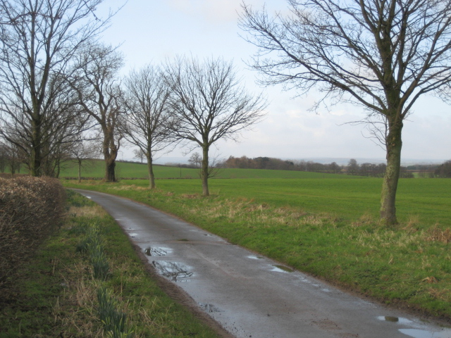 Lane to Theakston
