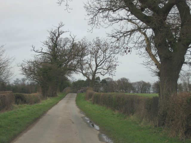 Lane to Kirkby Hall