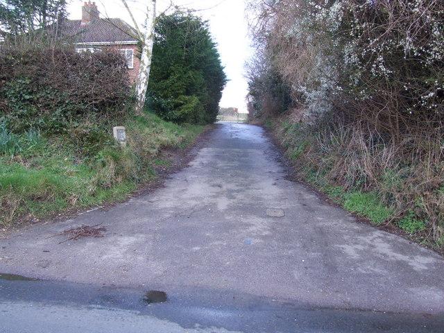 Track between Dwellings, Newton Flotman