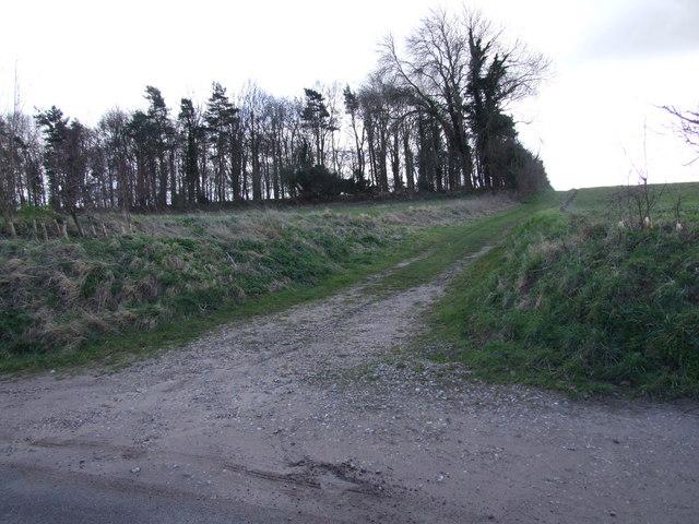 Farm Track along Edge of Woodland, Tasburgh