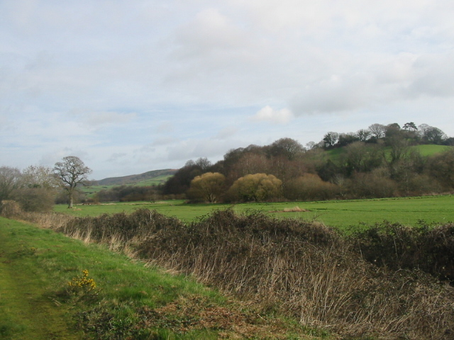 Countryside north of Otterton