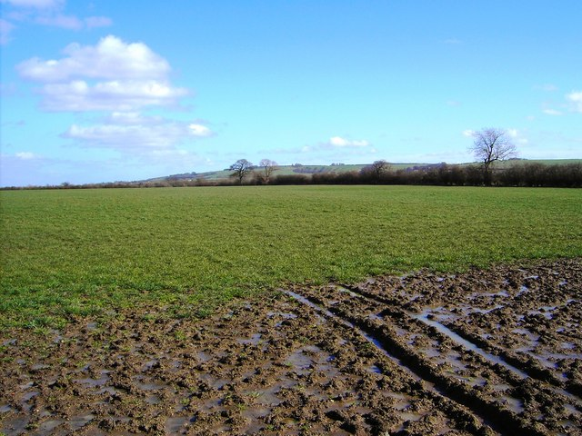 Field north of Bishopstone (1)