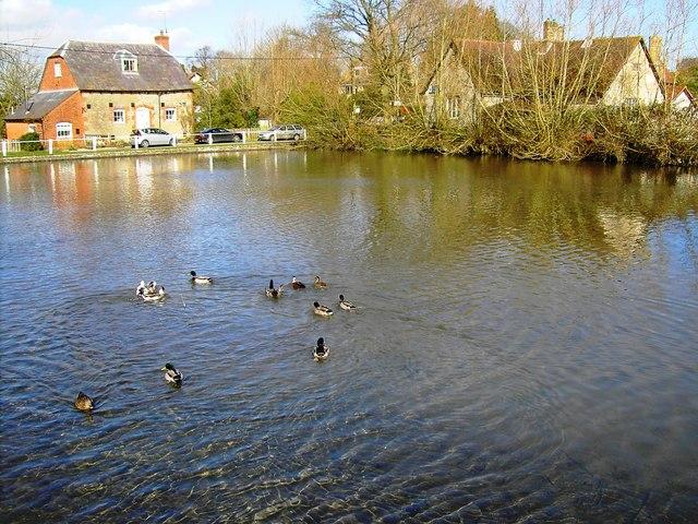 Local residents, village pond, Bishopstone, Swindon