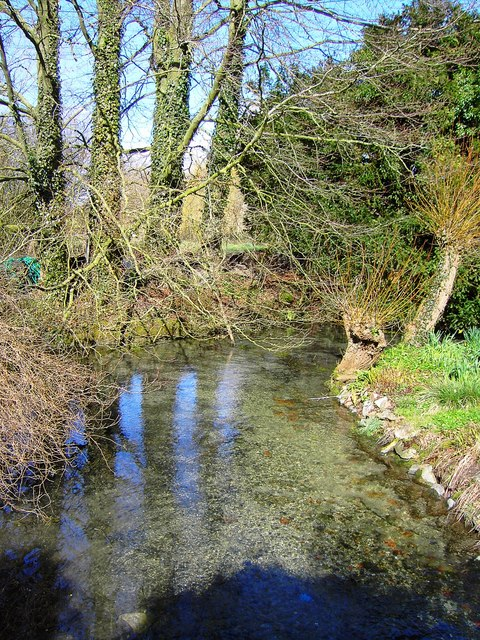 Stream south of the pond, Bishopstone, Swindon
