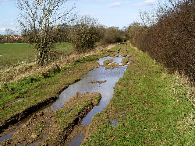 Mucky Lane, Burton Pidsea